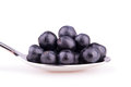 Blueberries on spoon Royalty Free Stock Photo