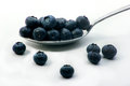 Blueberries on a spoon Royalty Free Stock Photo
