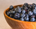 Blueberries washed in a wooden bowl Stock Image