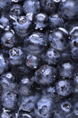 Blueberries in water close-up Stock Photo