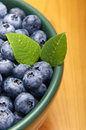Blueberries from the wood in a bowl Royalty Free Stock Image