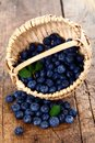 Blueberries in wooden basket Stock Image