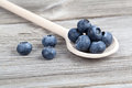 Blueberries on a wooden spoon Stock Images