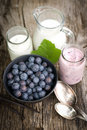 Blueberries and yogurt Royalty Free Stock Photo