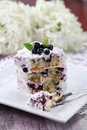 Blueberry cake with sour cream Royalty Free Stock Photos