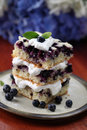 Blueberry cake with whipped cream Stock Images