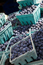 Blueberry cartons Royalty Free Stock Images