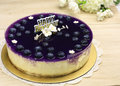 Blueberry cheese cake decorated with fresh gello layer Royalty Free Stock Photos