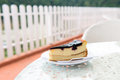 Blueberry cheese cake piece of on white plate Royalty Free Stock Images