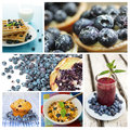 Blueberry dessert collage Stock Photography