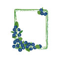 Blueberry frame isolated on white background border berry garland ripe blue berry with leaves vector illustration Royalty Free Stock Images