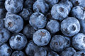 Blueberry Fruit Royalty Free Stock Photo
