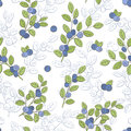 Blueberry graphic color seamless pattern sketch illustration