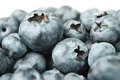 Blueberry heap Royalty Free Stock Photography