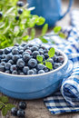 Blueberry with leaves in a bowl Royalty Free Stock Image