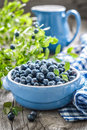 Blueberry with leaves in a bowl Royalty Free Stock Photos
