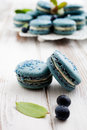 Blueberry macaroons close up of with white filling Royalty Free Stock Photo