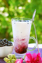 Blueberry milkshake Royalty Free Stock Images