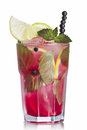 Blueberry mojito garnished with lime slice skewered blueberries and fresh mint Royalty Free Stock Photo
