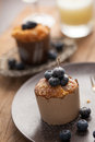 Blueberry muffin Royalty Free Stock Photo