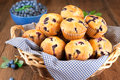 Blueberry muffins in a basket Royalty Free Stock Photography