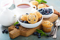Blueberry muffins in a bowl Royalty Free Stock Photo