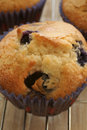 Blueberry muffins close up of freshly baked Stock Photo
