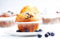 Blueberry muffins delicious homemade with fresh blueberries Royalty Free Stock Photos