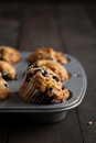 Blueberry muffins freshly baked in muffin pan served on dark wooden table moody lighting rustic and natural atmosphere Stock Photos