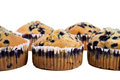 Blueberry muffins large delicious isolated on white background Stock Images