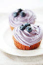 Blueberry muffins still life selective focus Stock Photos