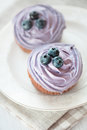 Blueberry muffins still life selective focus Stock Images