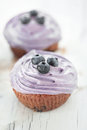 Blueberry muffins still life selective focus Royalty Free Stock Photo