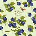 Blueberry pattern full