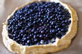 Blueberry pie Royalty Free Stock Images