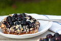 Blueberry pie blã ueberry on a garden table in summer Royalty Free Stock Photos