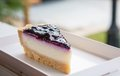 Blueberry pie cake custard on white plate side view Royalty Free Stock Image