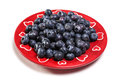 Blueberry on plate red with white background Royalty Free Stock Photography