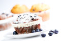 Blueberry and raisin muffins delicious homemade with fresh blueberries Stock Image