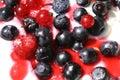 Blueberry, Raspberry and Yogurt Royalty Free Stock Photography