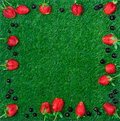 Blueberry and strawberry frame on green grass Stock Photography