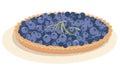 Blueberry tart vector