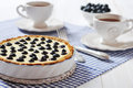 Blueberry tart with cup of tea on checkered background Stock Images