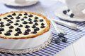 Blueberry tart with cup of tea on checkered background Stock Image