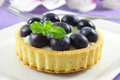 Blueberry tart fresh with a sweet vanilla creme Royalty Free Stock Photography