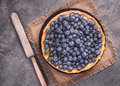 Blueberry tart with icing sugar
