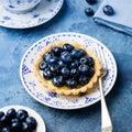 Blueberry tart, pie, tartlet with vanilla custard. Royalty Free Stock Photo