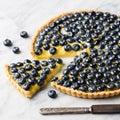 Blueberry tart with vanilla custard on a marble board. Royalty Free Stock Photo