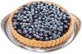 Blueberry tart on white isolated background Stock Image