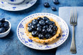 Blueberry tartlet, pie, tart with vanilla custard. Royalty Free Stock Photo